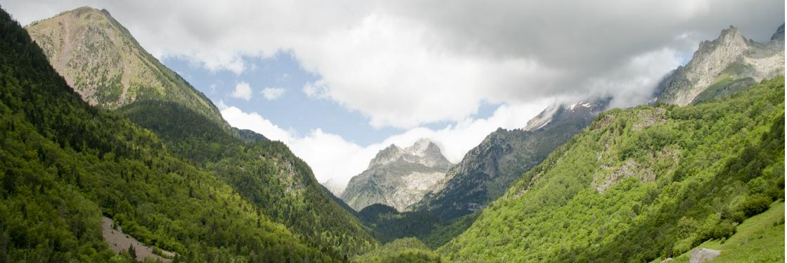 Nuestras ópticas en Huesca